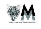 Deconstrucción zoológica serie (Jaguar) - Martínez Juan Pablo