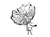 Rodriguez Lisseth / Soleado - Rodriguez Lisseth