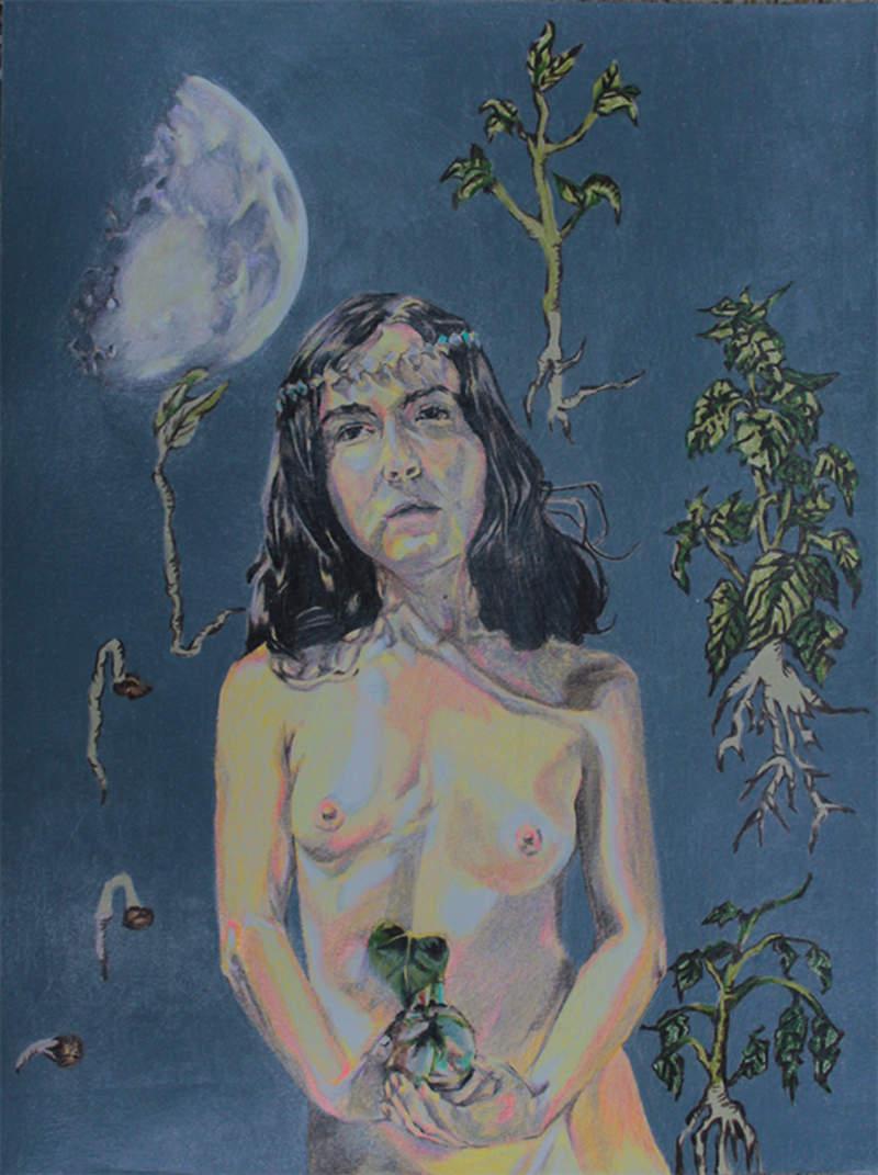 Sembradora de semillas | Rodriguez Lisseth