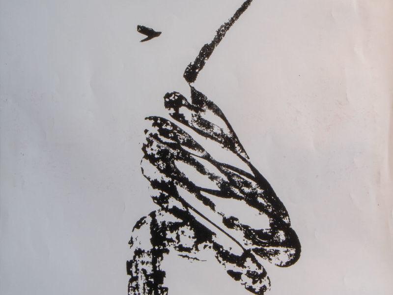 El caballero águila