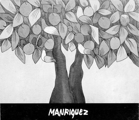 Manríquez Fernando