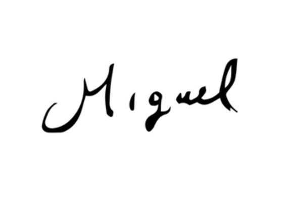 Varea Miguel